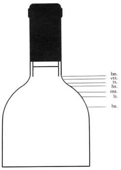 Diagram of bottle showing the following levels labelled, in descending order: bn. vts. ts. hs. ms. ls. bs.